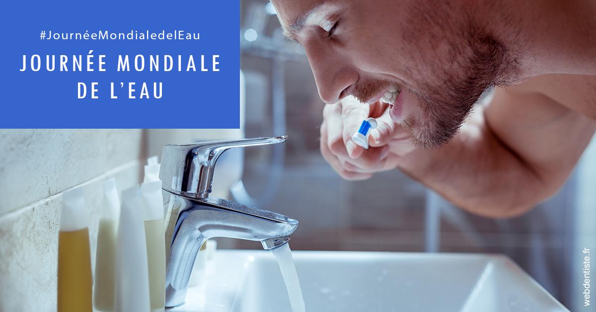 https://dr-renoux-alain.chirurgiens-dentistes.fr/Journée de l'eau 2